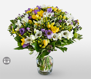 Lovely Freesias<Br><Font Color=Red>White & Yellow Flowers</Font>