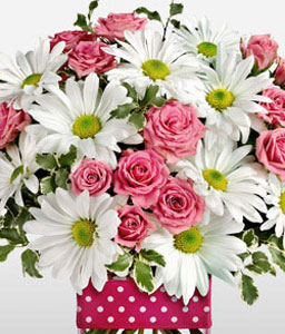 Send Flowers To United States Usa Same Day Florist