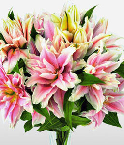 Luxurious Roselily For Mum