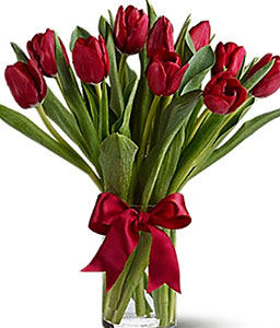 Red Tulips In Vase