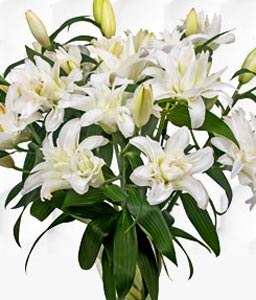 Double Flowering Lilies Bouquet