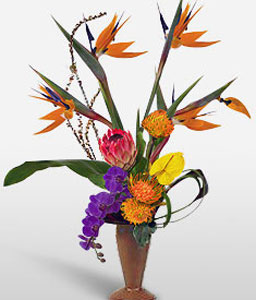 Valentines Arrangement-Orange,Pink,Purple,Anthuriums,Birds of Paradise,Orchid
