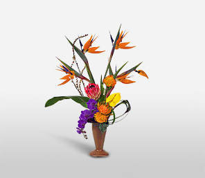 Tropical Exotica-Orange,Pink,Purple,Yellow,Anthuriums,Birds of Paradise,Orchid,Arrangement