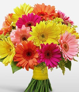 Gleeful Gerbaras-Mixed,Orange,Peach,Red,Yellow,Gerbera,Daisy,Bouquet,Flowers