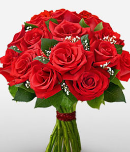 One Dozen Red Roses-Red,Rose,Bouquet