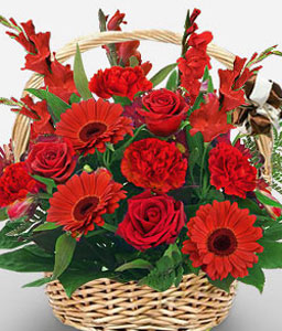 Flaming-Red,Carnation,Gerbera,Mixed Flower,Rose,Arrangement,Basket