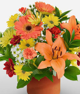 Blossom Arrangement-Mixed,Orange,Red,Yellow,Carnation,Daisy,Lily,Mixed Flower,Bouquet