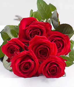 Love Liaison - 6 Red Roses-Red,Rose,Bouquet