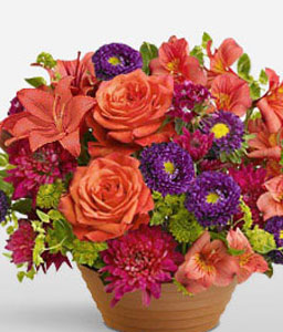 Rushmore-Mixed,Orange,Purple,Red,Alstroemeria,Chrysanthemum,Lily,Mixed Flower,Rose,Arrangement
