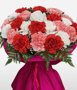 Carnation With Love-Mixed,Peach,Pink,Red,White,Yellow,Carnation,Arrangement,Bouquet