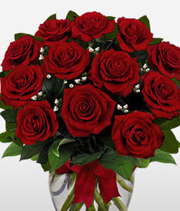 Dozen Roses In A Vase-Red,Rose,Arrangement