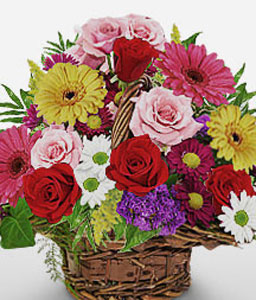Pot Pourri-Blue,Mixed,Pink,Red,Violet,Chrysanthemum,Daisy,Gerbera,Rose,Arrangement,Basket