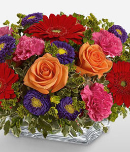 Square Mounded Centerpiece-Orange,Pink,Red,Carnation,Chrysanthemum,Daisy,Gerbera,Mixed Flower,Rose,Arrangement