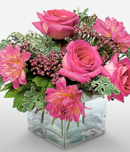 Mystical Dreams - Pink Flowers in Cube Vase-Pink,Dahlia,Gerbera,Rose,Arrangement
