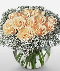 Elegant Dozen-Peach,Rose,Arrangement