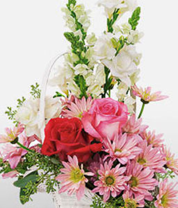 Blooms-Mixed,Pink,Red,Freesia,Mixed Flower,Rose,Arrangement