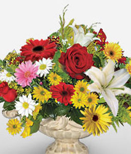 Pipas Perfection-Mixed,Red,White,Yellow,Daisy,Gerbera,Lily,Mixed Flower,Rose,Arrangement