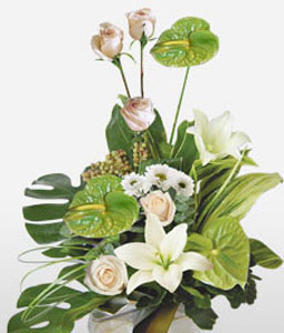 Grace-Green,Pink,White,Rose,Lily,Chrysanthemum,Anthuriums,Arrangement