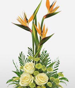 Elegance-Green,Orange,Yellow,Chrysanthemum,Birds of Paradise,Rose,Arrangement