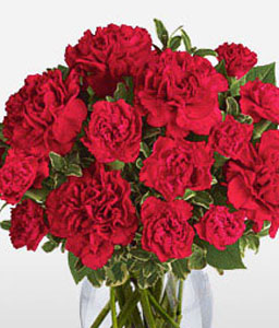 Valentines Flowers-Red,Carnation,Bouquet