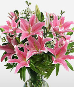 Tenderness-Pink,Lily,Arrangement
