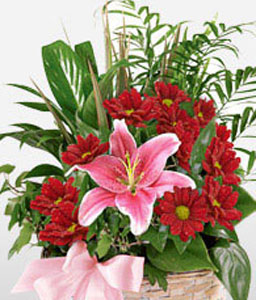 For The Princess-Pink,Red,Chrysanthemum,Lily,Arrangement,Basket