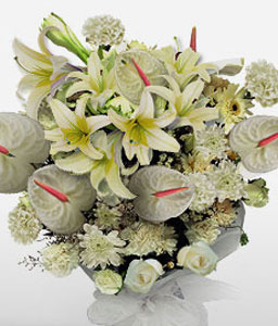 Blushing Ivory-White,Anthuriums,Carnation,Chrysanthemum,Lily,Mixed Flower,Bouquet