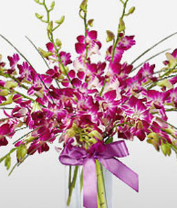 Birthday Flowers <Br><Font Color=Red>Orchids In Vase</Font>