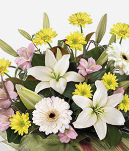 Freesia Frenzy-Pink,White,Yellow,Daisy,Gerbera,Lily,Arrangement