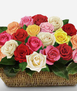 Rainbow Festival-Mixed,Pink,Red,White,Yellow,Rose,Arrangement,Basket