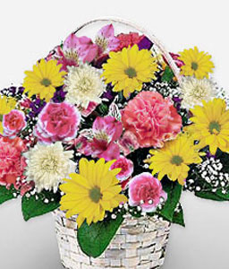 Alter Do Chao-Mixed,Pink,Yellow,Chrysanthemum,Daisy,Mixed Flower,Arrangement,Basket