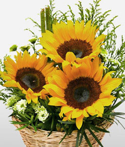 Golden Mile Sunflowers-Yellow,Orchid,SunFlower,Arrangement