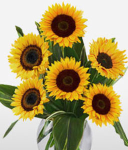 Cartagena Summer-Yellow,SunFlower,Arrangement