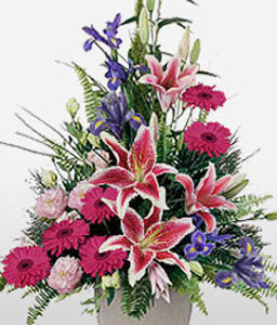 Mexico Magnificence-Pink,Carnation,Daisy,Gerbera,Lily,Mixed Flower,Rose,Arrangement