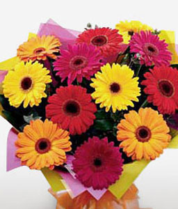 Rainbow Burst-Mixed,Orange,Pink,Red,Yellow,Daisy,Gerbera,Bouquet