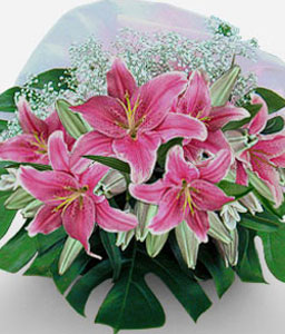 Pink Champagne-Green,Pink,Lily,Bouquet