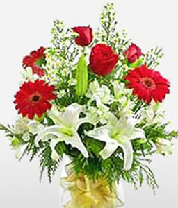 Pure Love-Green,Red,White,Gerbera,Lily,Rose,Bouquet
