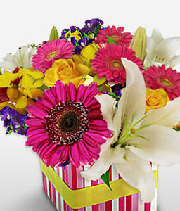 Aussie Funky Box-Mixed,Pink,White,Yellow,Gerbera,Iris,Lily,Mixed Flower,Rose,Arrangement
