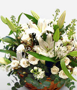 White Haven-White,Lily,Rose,Arrangement,Basket