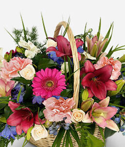 Scent Of Nature-Peach,Pink,Red,Carnation,Daisy,Gerbera,Mixed Flower,Rose,Arrangement