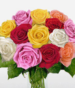 Penthouse Real One Dozen Roses-Mixed,Pink,Red,White,Yellow,Rose,Bouquet