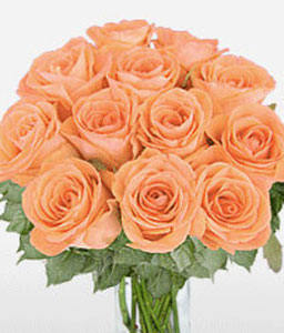 Peach Perfect-Rose,Bouquet