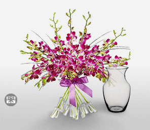Orchid Magnificence-Purple,Orchid,Arrangement