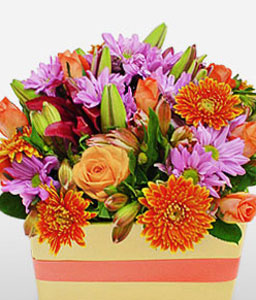 Razzle Dazzle-Mixed,Orange,Purple,Rose,Mixed Flower,Lily,Gerbera,Chrysanthemum,Arrangement