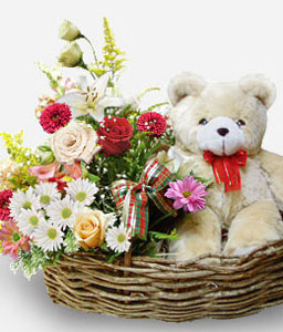 Flowers And Teddy In Basket-Mixed,Mixed Flower,Teddy,Basket,Hamper