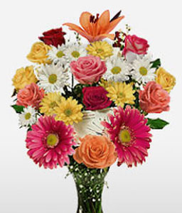 Zocalo Extravaganza-Mixed,Pink,White,Yellow,Daisy,Gerbera,Lily,Mixed Flower,Rose,Arrangement