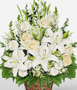 White Waterfall-White,Carnation,Lily,Mixed Flower,Rose,Arrangement,Basket