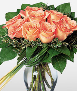 12 Peach Roses-Peach,Rose,Arrangement
