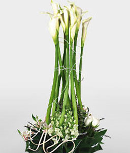 White Beauties-Green,White,Mixed Flower,Arrangement