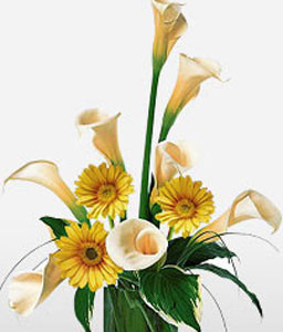 Placid Sunrise-Yellow,Gerbera,Mixed Flower,Arrangement